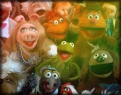 muppet central news quotthe muppet moviequot anniversary