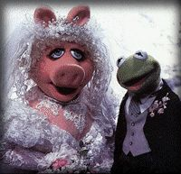 Muppet Central Help Frequently Asked Questions