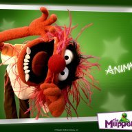 animal99