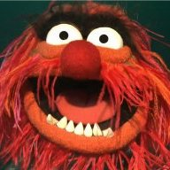 muppetgirl10
