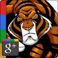 King Tigre