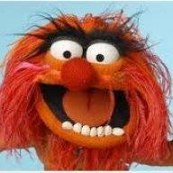 MuppetFanbyRJM
