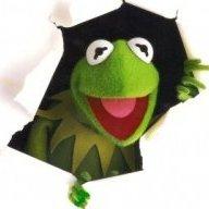 Justagreenfrog