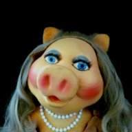 karen Piggy