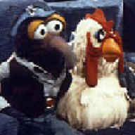Gonzo & Camilla