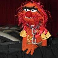 MuppetWarrior