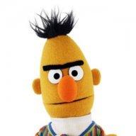 Bert fan